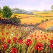Ivana Botto campi di grano e papaveri,60x50 olio